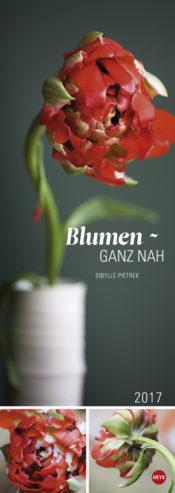 Blumen - ganz nah