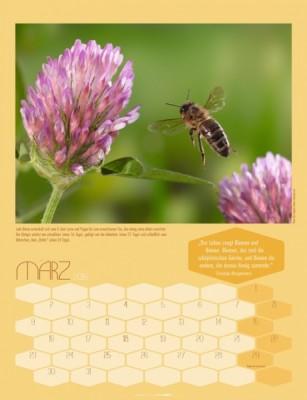 Von Bienen und Honig