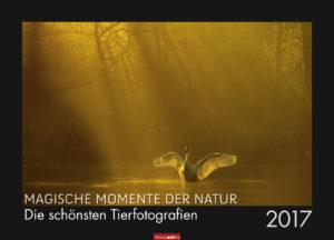 Magische Momente der Natur