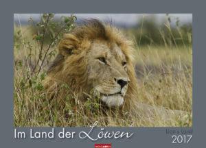 Im Land der Löwen