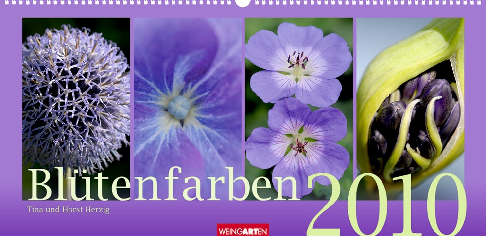 """Weingarten """"Blütenfarben 2010"""""""