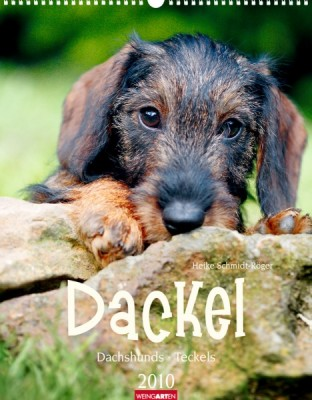 """Weingarten """"Dackel 2010"""", Cover"""