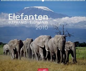 """Weingarten """"Elefanten 2010"""", Cover"""