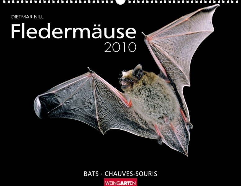 Weingarten Kalender Fledermaeuse 2010, Cover