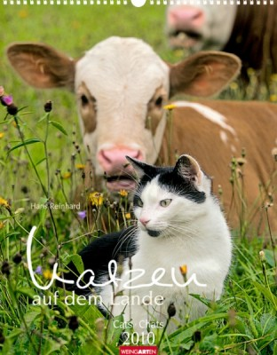 """Weingarten Kalender """"Katzen auf dem Lande 2010"""", Cover"""