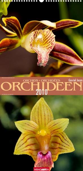 """Weingarten """"Orchideen 2010"""""""