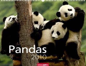 """Weingarten """"Pandas 2010"""", Cover"""