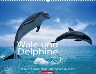 """Weingarten Kalender """"Wale und Delphine 2010"""", Cover"""